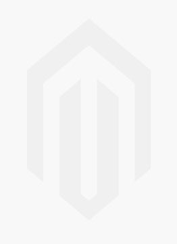 Ferm ATM1040 Druckluft-Farbsprühpistole