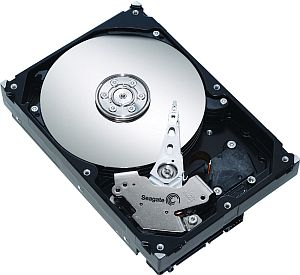 Seagate Barracuda 7200.9 500GB, 8MB cache, SATA II (ST3500841AS)