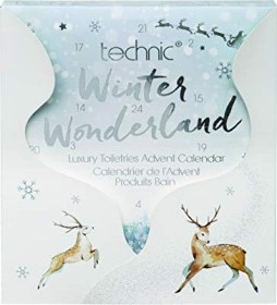 Technic winter Wonderland Advent Calendars