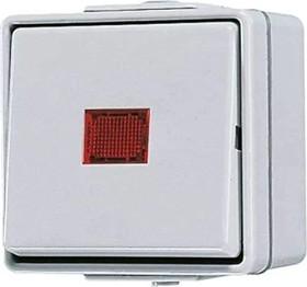 Jung WG 600 Wipp-Kontrolschalter 10AX 250V (606 KOW)