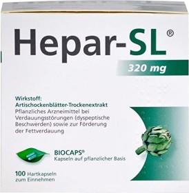 Hepar-SL 320mg Hartkapseln, 100 Stück