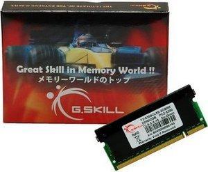 G.Skill SK Series SO-DIMM 2GB, DDR2-667, CL5 (F2-5300CL5S-2GBSK)