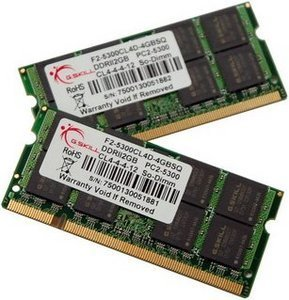 G.Skill SQ Series SO-DIMM Kit 4GB, DDR2-667, CL4 (F2-5300CL4D-4GBSQ)