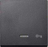 Merten System M Wippe Thermoplast edelmatt, anthrazit (430714)