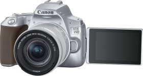 Canon EOS 250D silber mit Objektiv EF-S 18-55mm 4.0-5.6 IS STM