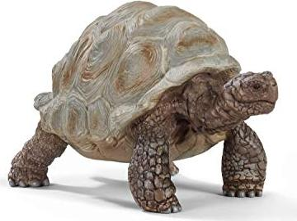 Schleich Wild Life Neuheiten 2020 Rentier Schildkröte Dromedar Spielfiguren NEU