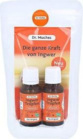 Dr. Muches Ingwer Tropfen, 40ml