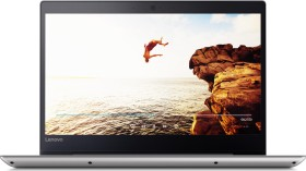 Lenovo IdeaPad 320S-14IKB grau, Pentium Gold 4415U, 8GB RAM, 256GB SSD (80X400ENGE)