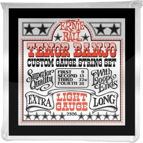 Ernie Ball Stainless Steel tenor banjo Light (P02306)