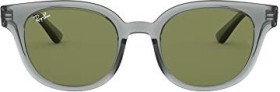 Ray-Ban RB4324 50mm grey-transparent/light green classic (RB4324-64504E)
