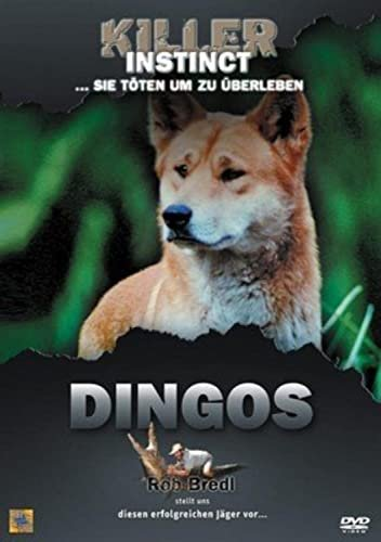 Killer Instinct: Dingos -- via Amazon Partnerprogramm