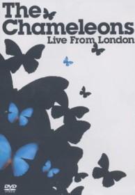Chameleons - Live from London