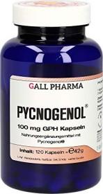 Pycnogenol 100mg GPH Kapseln, 120 Stück