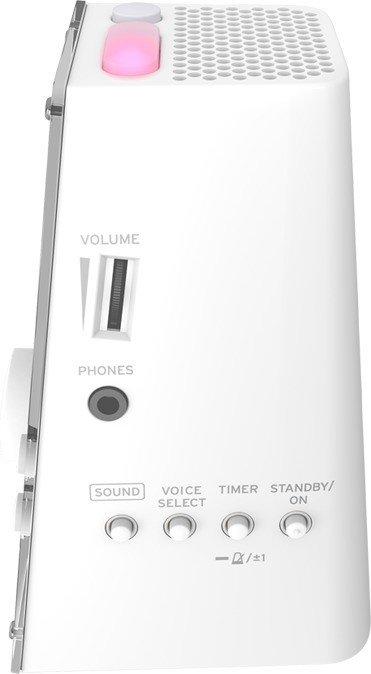 Korg KDM-3 Metronom Stimmgerät Vintage Lautsprecher Timer Referenzton Schwarz