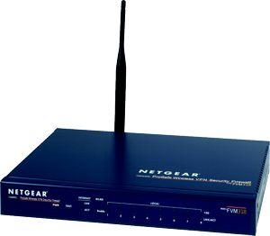 Netgear ProSAFE FVM318