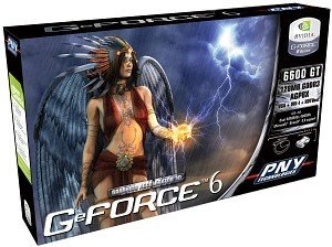 PNY Verto GeForce 6600 GT, 128MB DDR3, DVI, TV-out (G66600GN1F12YPB)