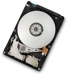 HGST Endurastar J4K320 100GB, SATA 1.5Gb/s (HEJ423210H9E300/0A60318)