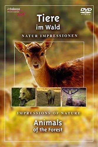 Tiere im Wald -- via Amazon Partnerprogramm