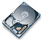 Maxtor DiamondMax Plus 9 250GB 2MB, IDE (6Y250L0)