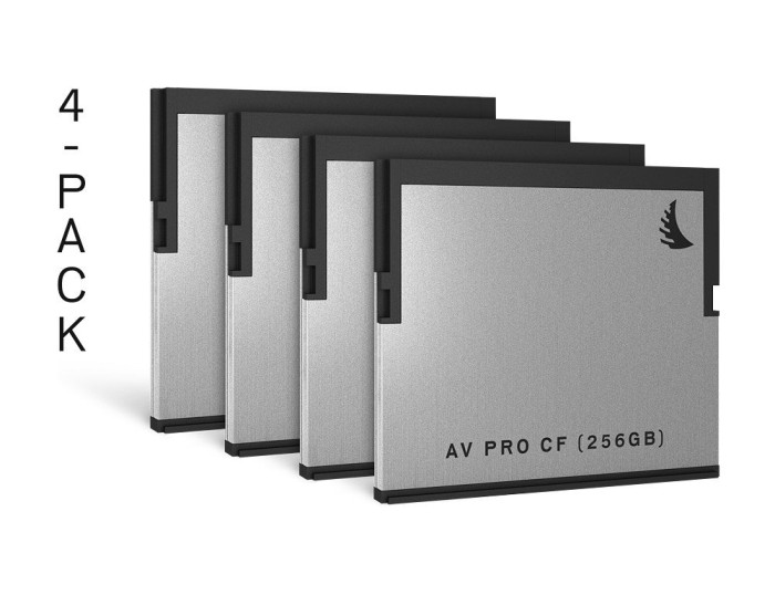 Angelbird AV PRO R550/W490 CFast 2.0 CompactFlash Card 256GB, 4er-Pack (AVP256CFX4)
