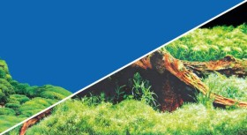 Hobby Fotorückwand Spring & Moss, 100x50cm (31011)