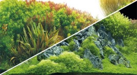 Hobby Fotorückwand Planted River & Green Rocks, 120x50cm (31045)
