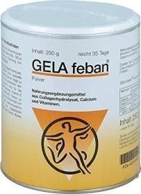 Gela Feban with collagen hydrolyzate Plus Powder, 250g