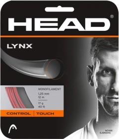 Head Lynx rot