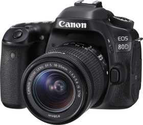 Canon EOS 80D mit Objektiv EF-S 18-55mm 3.5-5.6 IS STM (1263C034)