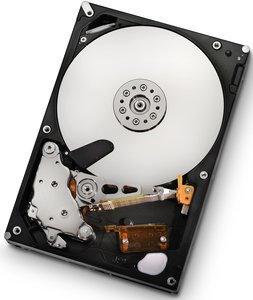 HGST Ultrastar A7K2000 500GB, SATA 3Gb/s (HUA722050CLA330/0F11000)