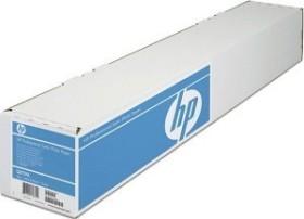 "HP Professional Fotopapier seidenmatt, 24"", 300g/m², 15m (Q8759A)"