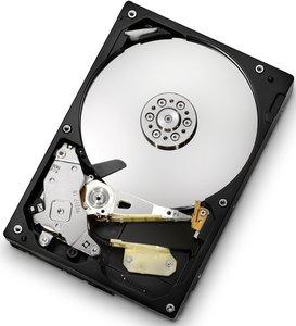HGST CinemaStar 7K1000.C 250GB, SATA 3Gb/s (HCS721025CLA382/HCS721025CLA332)