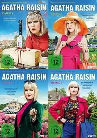 Agatha Raisin Staffel 1-3 (DVD)