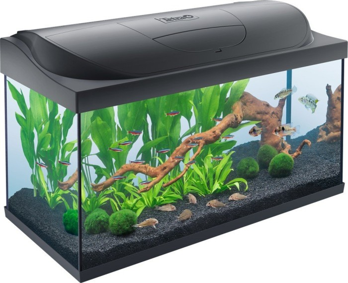 Tetra Starter Line LED 105l Aquarium, schwarz (283916)