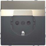 Merten System Design SCHUKO-Steckdose, nickelmetallic (MEG2310-6050)