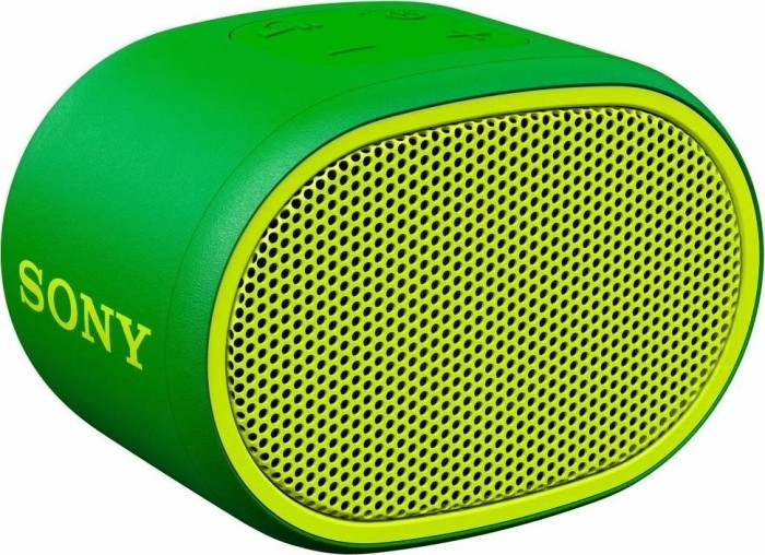 Sony SRS-XB01 grün