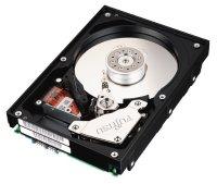 Fujitsu MAM3367MP, 36.7GB, U160-LVD (15000 obr./min)