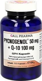 Pycnogenol 50mg + Q-10 100mg GPH Kapseln, 120 Stück