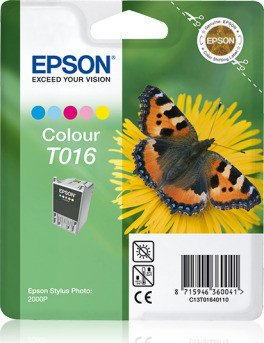 Epson T016 ink coloured (C13T01640110)