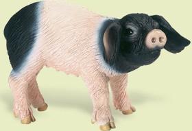 Schleich Farm World - Swabian-Hall Piglet (13636)