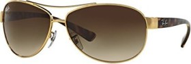 Ray-Ban RB3386 67mm gold-tortoise/brown gradient (RB3386-001/13)
