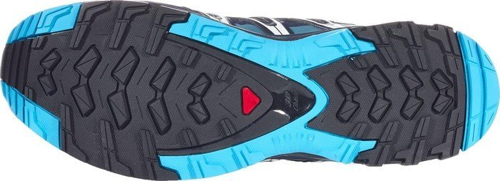 Salomon XA Pro 3D GTX navy blazerhawaiian oceandawn blu (Herren) (393320) ab € 100,78