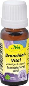 cdVet bronchial vital ornamental birds & exotics 10ml (189)