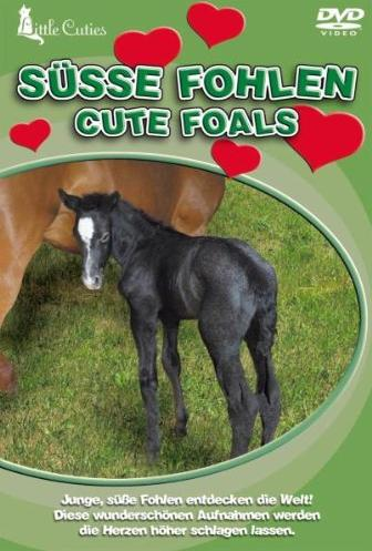 Little Cuties: Süße Fohlen -- via Amazon Partnerprogramm