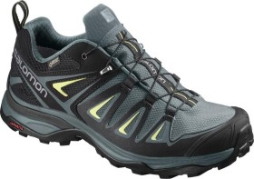 Salomon X Ultra 3 GTX artic/darkest spruce/sulphur spring (Damen) (400065)