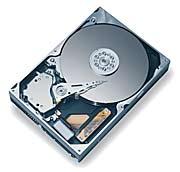 Maxtor DiamondMax Plus 9 60GB, IDE (6Y060P0)