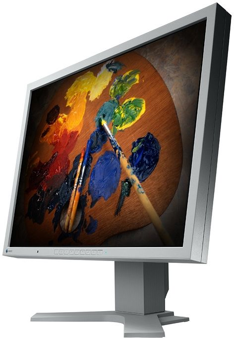 "Eizo FlexScan S2100 grey, 21.3"" (S2100-GY)"
