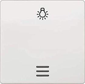 Siemens DELTA i-system Wippe mit Symbol Licht für Taster, titanweiß (5TG6206)