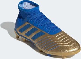 adidas Predator 19.1 FG gold metallic/football blue/cloud white (Junior) (G25789)