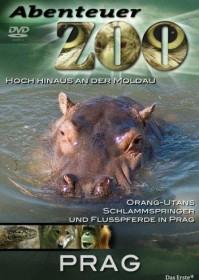 Abenteuer Zoo - Adelaide (DVD)